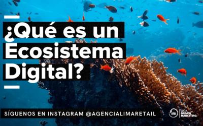 Ecosistema Digital ¿Qué es y cómo usarlo?