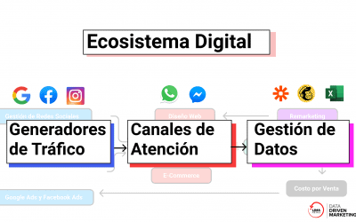 ¿Qué es un Ecosistema Digital para tus campañas de marketing?